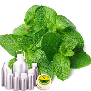 Mint Terpenes Crude