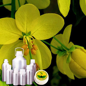 Cassia Therapeutic Grade Oil