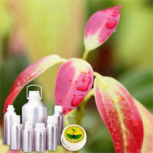 Cinnamon Leaf Therapeutic Grade Oil