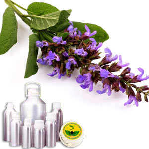 Clary Sage Therapeutic Grade Oil