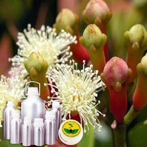 Clove Therapeutic Grade Oil