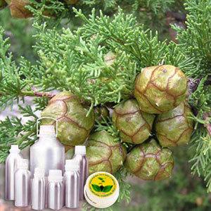 Cypress Therapeutic Grade Oil
