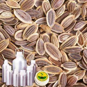 Dill Seed Therapeutic Grade Oil