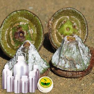 Eucalyptus Therapeutic Grade Oil