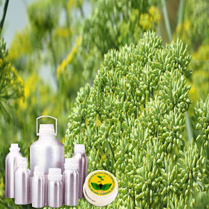 Fennel Therapeutic Grade Oil