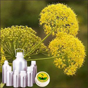 Galbanum Therapeutic Grade Oil