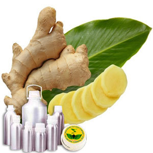 Ginger Therapeutic Grade Oil