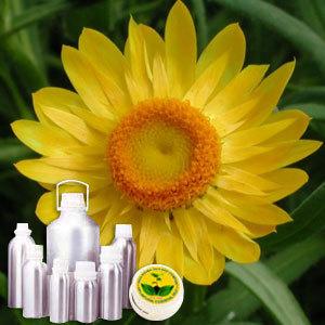 Helichrysum Therapeutic Grade Oil