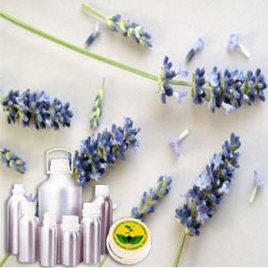 Lavender Therapeutic Grade Oil