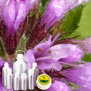 Marjoram Therapeutic Grade Oil