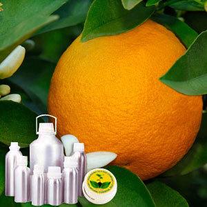 Petitgrain Therapeutic Grade Oil