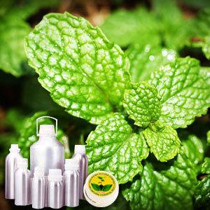 Spearmint Therapeutic Grade Oil