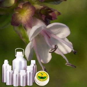 Spikenard Therapeutic Grade Oil