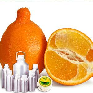 Tangerine Therapeutic Grade Oil