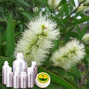 Tea Tree Therapeutic Grade Oil