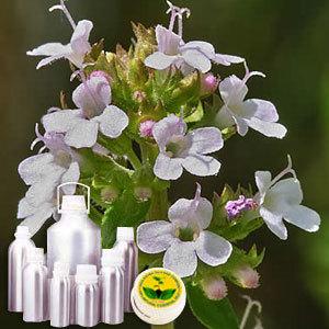 Thyme Therapeutic Grade Oil