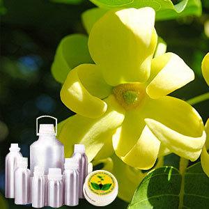 Ylang Ylang Therapeutic Grade Oil