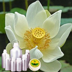 Indian Lotus Attar