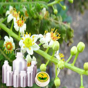 Frankincense Therapeutic Grade Oil