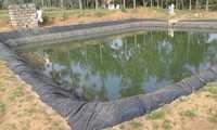Farm Pond Liner