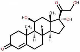 Human serum (cortisol spiked)