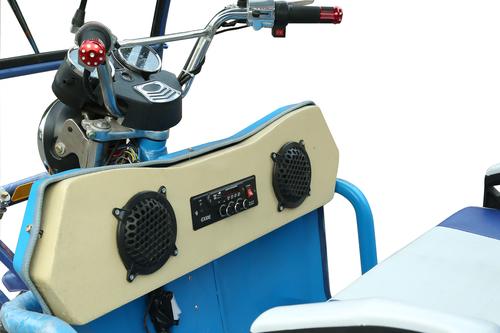 Easy Way Erx E Rickshaw