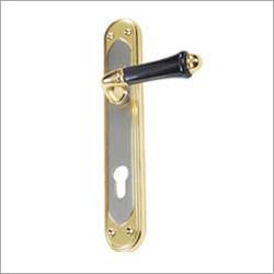 Dual Finish Lever Lock