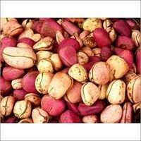 Pure Kola Nuts