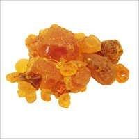 Gum Arabic Acacia