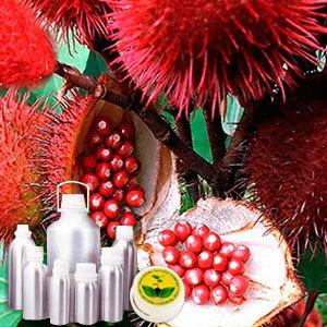 Anatto Extract Kesar Mango Shade