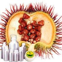 Annatto Extract 4% Bixin