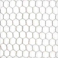 SS Hexagonal Wire Mesh