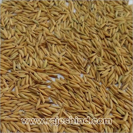 Organic Parmal Paddy