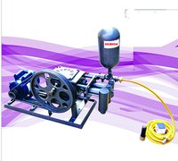 Car Washer Double Cylinder