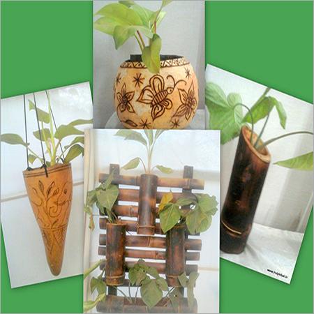 Planters Tuma and Bamboo Craft
