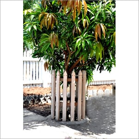 Cement Tree Guard