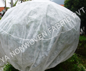 PP Spunbonded Virgintex Nonwoven Fabric