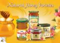 Raw Chestnut Honey High Quality Honey