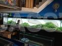 Acrylic-Aquarium
