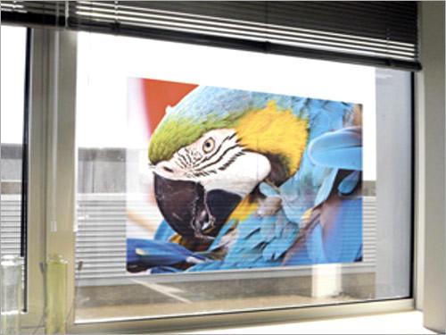 Digital Window Graphics