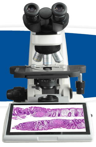 Digital Biological Microscope