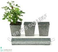 Galvanized Garden Tin herb container with Tray