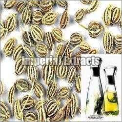 Ajwain Oil