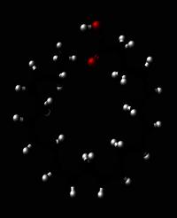 Image 014