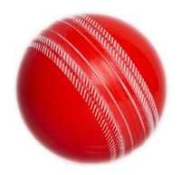 Cricket Soft Ball