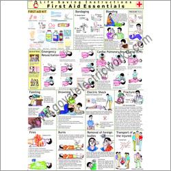 First Aid Chart Board