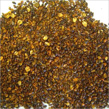 Malkangani Seeds