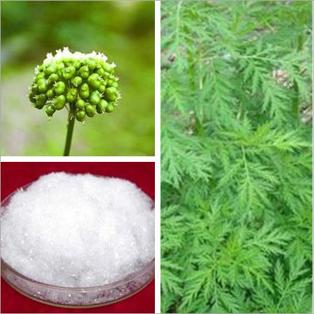Artemisinin Extracts