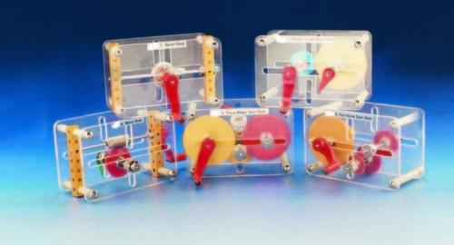 Laboratory Spur Gears