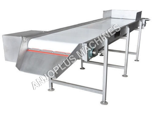 Infeed conveyor Mango Processing Machineries